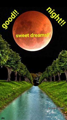 Good Night Quotes, Sweet Dreams, Good Morning, Nighty Night, Buen Dia, Bonjour, Bom Dia