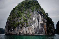DWS Vietnam