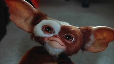 'Gremlins' Remake Could Finally Happen, Seth Grahame-Smith To Produce Les Gremlins, Gremlins Gizmo, Blade Runner, Chris Columbus, Romance Movies, 1980's Movies, Horror Movies, Dioramas, Monsters