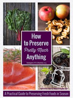 Do you find yourself overwhelmed with too much of certain foods, and no idea how to preserve them? Here's seven options for food preservation to preserve pretty much anything!