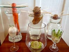 10 Vegetables You Can 'Magically' Regenerate From Kitchen Scraps