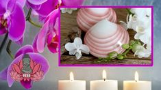 Massage domicile: Prix Massage Aux Coquillages Chauds : Tarif Séance Sea Shells, Athlete