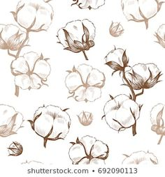 Cotton Plant, Vector Background, How To Draw Hands, Shabby, Tattoos, Drawings, Flowers, Plants, Pattern