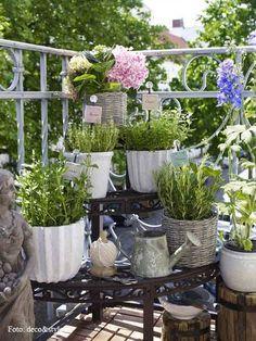 (1) Gartenideen
