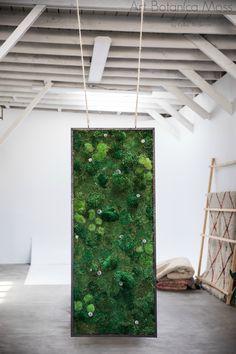 Hanging Fine Moss Art Panel by Art Botanica. Moss Wall Art, Moss Art, Moss Graffiti, Forever Green, Panel Art, Indoor Plants, Sculpture, Painting, Inspiration
