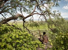 We Are What We Eat: Hunting the Hadza Way With Bows, Arrows, and Ingenuity