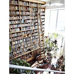 This gorgeous specimen. | 26 Bookshelves That Will Give You Serious Goals