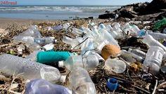 Costa Rica quer ser o primeiro país do mundo a eliminar plásticos de uso único