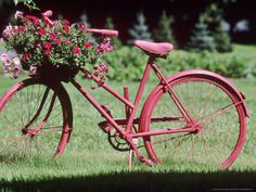 Bicycle Flower Planter  I have an old bicycle just rusting away outside...gonna do this...this weekend.