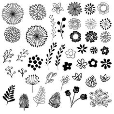 Hand Drawn Floral Elements // Clip Art Set // By Bi .- Handgezeichnete florale Elemente / / Clip Art Set / / von birDIYdesign Hand Drawn Floral Elements // Clip Art Set // by birDIYdesign – – - Art Floral, Floral Doodle, Flower Graphic, Doodle Art, Doodle Drawings, Tattoo Drawings, Tattoos, Botanical Line Drawing, Floral Drawing