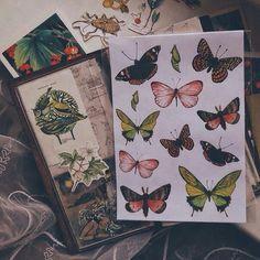 #бабочки#арт#рисунки#вдохновение