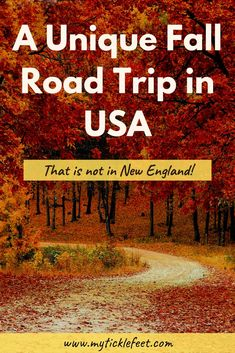 Drive the Blue Ridge Parkway this Fall - 3 Day Itinerary for America's Favorite Road Trip - My Ticklefeet Explore the Blue Ridge Parkway on the East Coast and get mesmerized by the fall colors of the Blue Ridge Mountains. Road Trip Packing, Road Trip Essentials, Road Trip Hacks, Usa Roadtrip, Blue Ridge Parkway, Blue Ridge Mountains, Ridge Road, East Coast Road Trip, Road Trip Usa