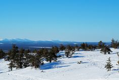 Levi Lapland Finland | Travel Inspiration | Pitsiniekka Finland Travel, Lapland Finland, Travel Inspiration, Travel Destinations, Mountains, Nature, Road Trip Destinations, Naturaleza, Destinations