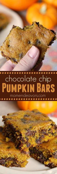 Pumpkin Chocolate Chip Bars - a chewy, delicious fall dessert! Healthy Pumpkin Desserts, Pumpkin Deserts, Pumpkin Foods, Pumpkin Pumpkin, Easy Fall Deserts, Candy Pumpkin, Pumpkin Lasagna, Pumpkin Drinks, Healthy Chocolate Desserts