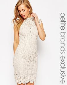 Paper Dolls Petite High Neck Lace Dress With Keyhole Back Detail