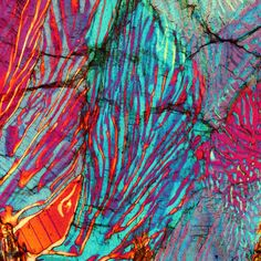 Myrmekite, polarized light microscopy