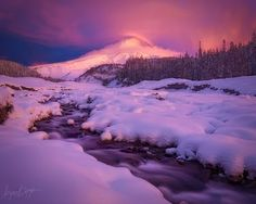 A fresh snow catches the vibrant glow of a winter sunrise, captured here from the shore of Mount Hood's White River. in Scrapbook photos  (5 photos)More photos from Ryan Dyar