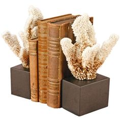 I pinned this Geneva Coral Bookend - Set of 2 from the Design Declaration event at Joss and Main!