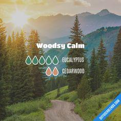 Woodsy Calm - Essential Oil Diffuser Blend