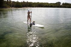 Surrounded by the emerald green waters, Key Largo is the first of the Florida Keys.