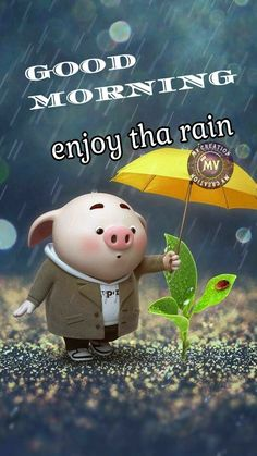 Good Morning Rainy Day, Good Morning Quotes, Rainy Days, Cold Weather Quotes, Monday Blessings, Good Thoughts, Quote Of The Day, Friends, Animals