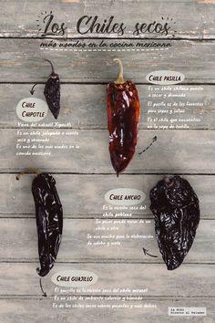 Aquí les presentamos algunos datos que quizás no sabían de los chiles secos más usados en al cocina mexicana Chilli Recipes, Veggie Recipes, Mexican Food Recipes, Authentic Mexican Recipes, Sushi Fish, Recipe Paper, Mexican Salsa, Spicy Sauce, Hot Sauce
