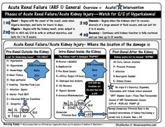 Acute Renal failure - IntraRenal Failure 15:1  20:1 pre renal and post renal overview  BUN Creatinine Ratio Labs Potassium Hyperkalemia Hypokalemia Hyponatremia Sodium Value Blood Mnemonic Nursing Student Acute Book StickEnotes Na K Cr Hypomagnesemia Study Sheets for Nurses NCLEX Tips Nursing Notes Cheats Nursing KAMP