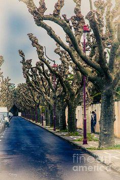 Neighborhood Ponta Delgada Azores Rene Triay Photography