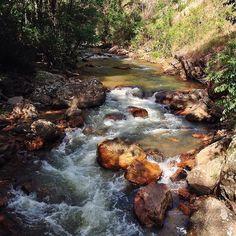 """#nature #natureza #eco #ecoturismo #landscape #paisagem #rio #riacho #água #water #river #wild #life #wonderful_places #goias #brasil #formosa #itiquira…"""