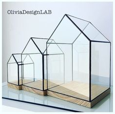 Big size glass house showcase natural wood base от OliviaDesignLab