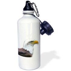 3dRose Bald Eagle bird of prey profile on white - eagle scout gifts - wild animal wildlife photography, Sports Water Bottle, 21oz