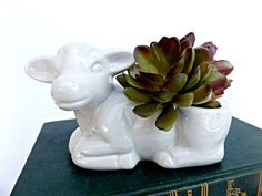 Milky White Cow Planter White Ceramic Cow by BrassRabbitVintage