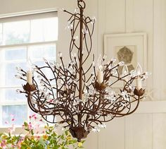Pottery Barn's Camilla 6-Arm Chandelier. Our new dining room light