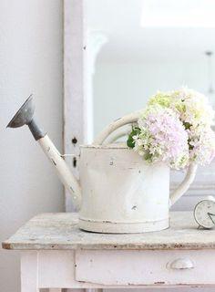annaffiatoio-fiori-bianchi
