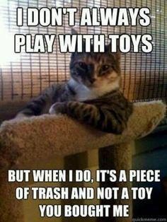 Or a box