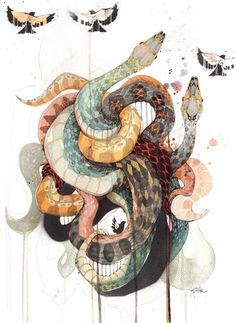 Official Rachel Walker Page. New Zealand watercolour, spray paint, pen and ink artist creating splashy celebrations of native and rare animals. Animal Drawings, Art Drawings, Snake Art, Snake Drawing, Snake Painting, Desenho Tattoo, Rachel Walker, Art Inspo, Amazing Art