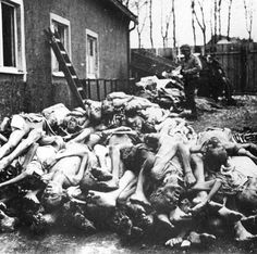"""The crematory ovens at Buchenwald obviously could not keep up with burning such a large number of bodies, so after the bodies fell through the floor of the gas chamber, they were piled up higher than a building.  The article in the Greeley Tribune said that Hochman called Holocaust deniers """"poison."""""""
