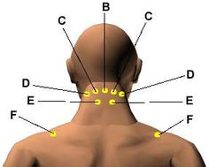 Acupressure Points for Relieving Neck Tension.