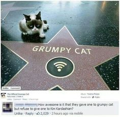 This grumpy cat pic and the comment below it both bring me immeasurable smiles hehe