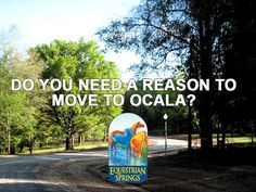 Do you need another good reason to move to paradise also known as #EquestrianSprings of #Ocala? Here's some good reasons for your horse and you to move here to Ocala! We have the very best equine infrastructure, including two major hospitals which are Peterson & Smith Equine Hospital, Ocala Equine Rescue and UF's very own Large Animal Hospital. #horse #animal #care — feeling excited at Equestrian Springs - Ocala's Most Beautiful Gated Horse Community.