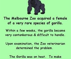 Consider, women in heat fuck with gorilla
