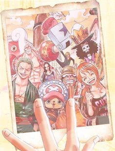 Photograph of memory - Straw hats pirate crew Monkey D. Luffy, Tony Tony Chopper, Roronoa Zoro, Sanji, Brook, Usopp, Nami, Franky, Nico Robin One piece