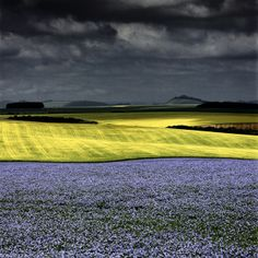 Landscape photograph of flax and oilseed rape fields in Chicklade Wiltshire by Charlie Waite. Dramatic x landscape picture for sale of farmland in a storm from Charlie Waite Photography. Scenic Photography, Photography Gallery, Image Photography, Photography Lessons, Photography Courses, Digital Photography, Beautiful World, Beautiful Places, Just Dream