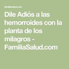 Dile Adiós a las hemorroides con la planta de los milagros - FamiliaSalud.com
