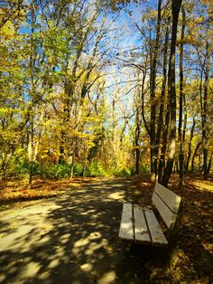 This is a beautiful picture of autumn park in Sofia, Bulgaria.