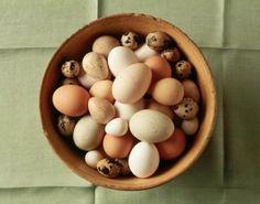 Scienza: #Perché le #uova di gallina hanno colori diversi? #Sapevatelo (link: http://ift.tt/2cfgP4u )