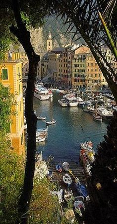 Camogli - Italia  www.google.it