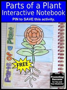 This free printable parts of a plant interactive notebook foldable activity will supplement your other classroom plants activities. It works well in earth science centers or stations for teaching or grade elementary students. They will color and cut out a Kindergarten Activities, Science Activities, Science Centers, Science Experiments, Science Chemistry, Science Books, Science Lessons, Educational Activities, Educational Technology