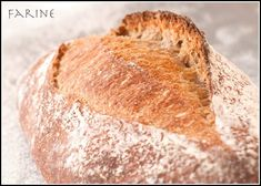 Now that I know how to bake with teff, I would buy truckloads of it and make teff bread on a regular basis if it were not so expensive: not only is it very nutritious but the ta… Teff Recipes, Flour Recipes, Gourmet Recipes, Healthy Recipes, Teff Bread, Teff Flour, Bread Maker Recipes, Veggie Patch, How To Make Bread