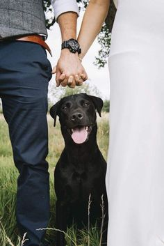 Fun Wedding Photo Ideas That Will Make You Smile Wedding Photos with Dogs Cute Wedding Photo Idea by Emma-Jane Photography. Engagement Photo Poses, Engagement Photo Inspiration, Fall Engagement, Engagement Photography, Wedding Photography, Dog Engagement Pictures, Funny Couple Photography, Country Engagement, Exposure Photography